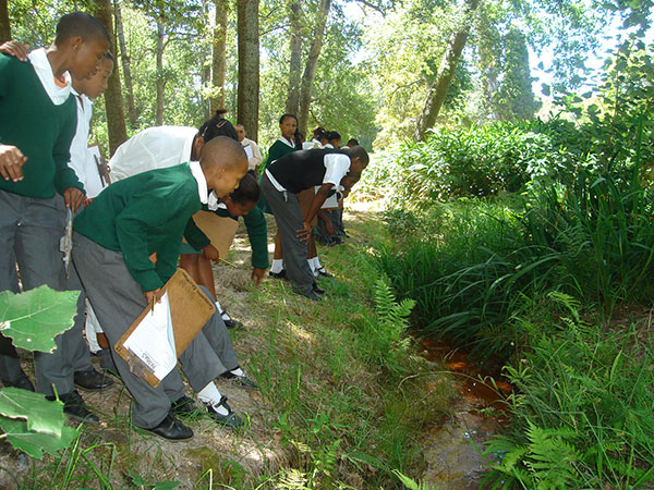 Kalkfontein-Prim-gr-7-2009-web-lesson