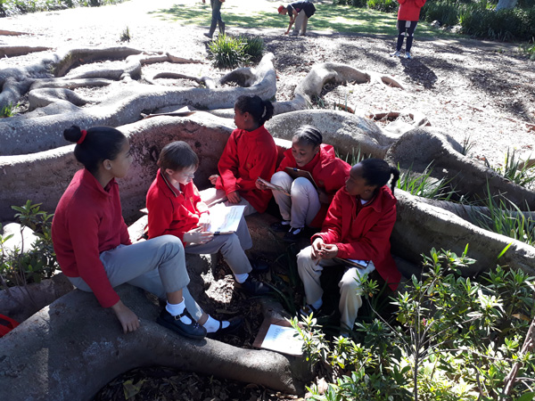 Sea-Point-Primary-School_20180911-web lesson